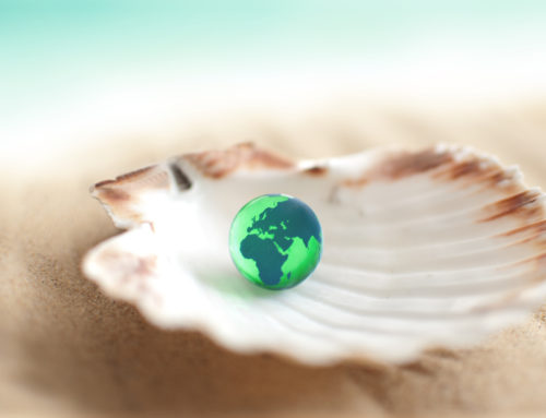 You're a NJ Realtor®, the WORLD is your oyster!